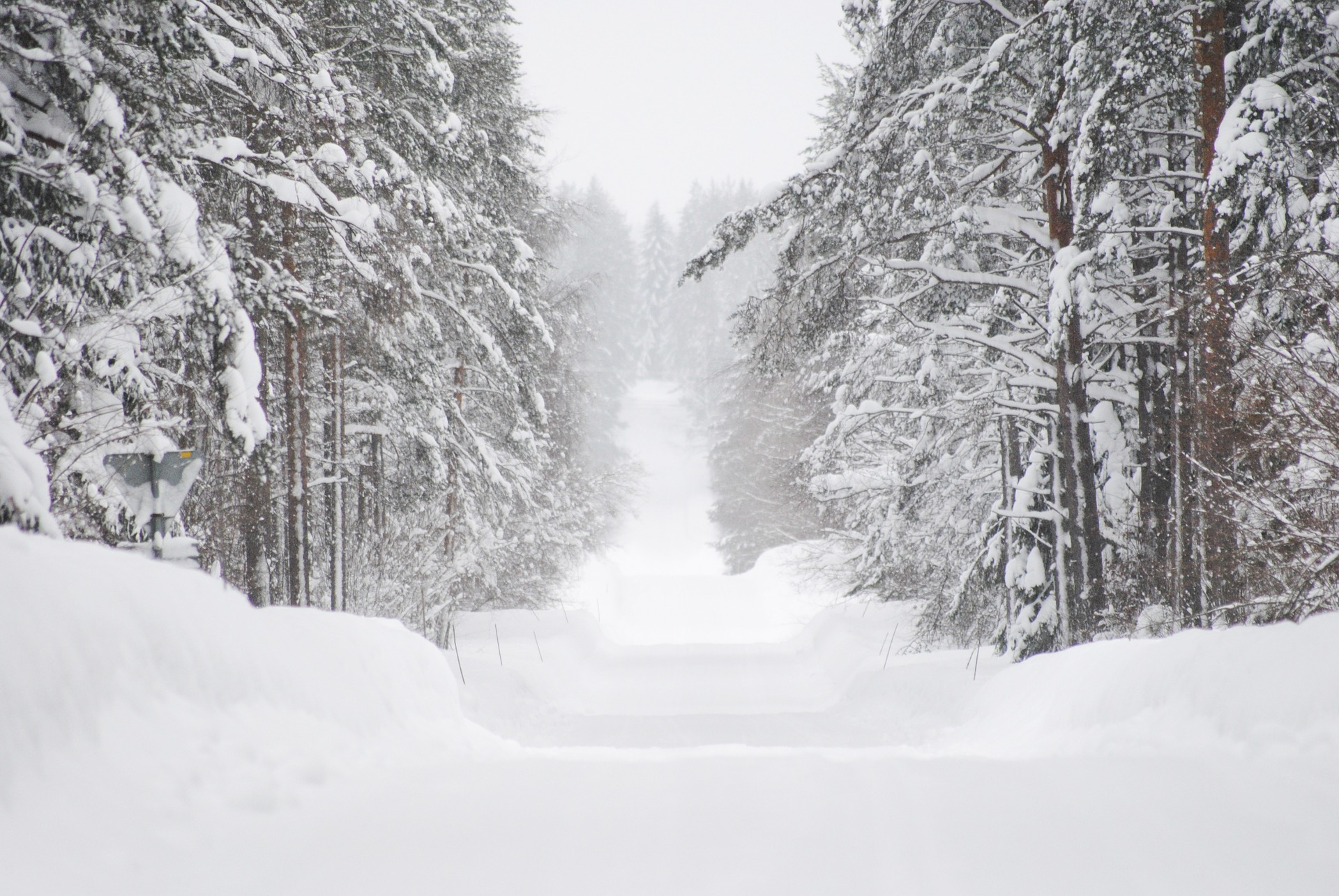Snow Routes in Mission